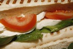 Mozzarella, tomato & spinach panini Stock Image