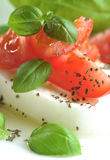 Mozzarella with tomatoes Stock Images