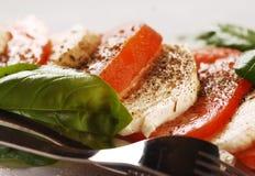 Mozzarella with tomatoes Stock Photos