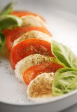 Mozzarella with tomatoes Stock Photography