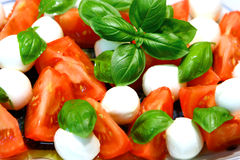 Mozzarella and tomatoes Royalty Free Stock Image