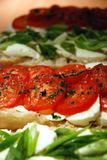 Mozzarella and tomatoes. Slices of mozzarella, tomatoes and spring onion over freshly baked ciabatta Stock Images