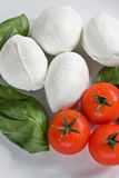 Mozzarella Tomatoes and Basil Royalty Free Stock Images