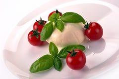 Mozzarella tomatoes basil Stock Image