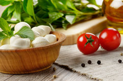 Mozzarella, tomatoes, basil and oil Stock Photography