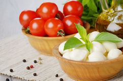 Mozzarella, tomatoes, basil and oil Stock Image