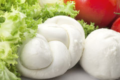 Mozzarella tomatoes and fresh salad Royalty Free Stock Photos