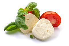 Mozzarella  with tomatoes and green basil isolated on white bac Royalty Free Stock Image
