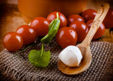 Mozzarella and tomatoes. Italian food Royalty Free Stock Images
