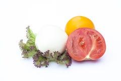 Mozzarella, tomatoes, lactuca, clipping path included Stock Photos