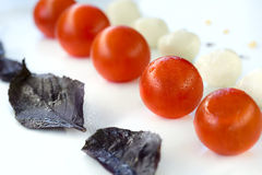 Mozzarella and tomatoes in line Royalty Free Stock Images