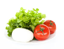 Mozzarella, tomatoes and salad. On white background royalty free stock photography