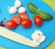 Mozzarella and tomatoes Stock Image