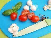 Mozzarella and tomatoes Royalty Free Stock Photography