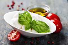 Mozzarella with tomatos and basil leaves Royalty Free Stock Photo