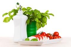 Mozzarella with tomatos and basil Royalty Free Stock Photography