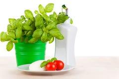 Mozzarella with tomatos and basil Stock Image