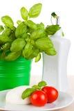 Mozzarella with tomatos and basil Stock Photo