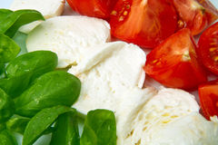 Mozzarella with tomtoes and basil Royalty Free Stock Photography