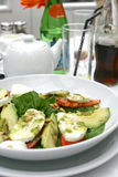 Mozzarella tricolore alfresco. Mozzarella tricolore salad with pine nuts served for lunch in a restaurant Royalty Free Stock Photos