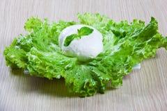 Mozzarella und Salat Lizenzfreies Stockfoto