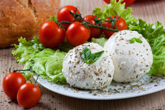 Mozzarella, vegetables and tomatoes Royalty Free Stock Photography