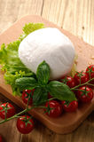 Mozzarella and vegetables Royalty Free Stock Images