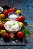 mozzarella, verduras frescas y especias y fondo oscuro imágenes de archivo libres de regalías