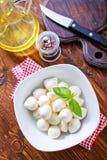 Mozzarella Stock Photography