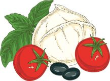 Mozzarella y verduras blancas del búfalo Fotografía de archivo libre de regalías