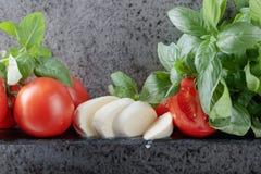 Mozzarella z basilem i pomidorami Zdjęcia Stock