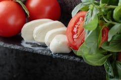 Mozzarella z basilem i pomidorami Zdjęcie Royalty Free