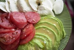 Mozzarellaost, avokado och tomat royaltyfri fotografi