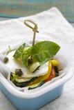 Mozzarelli sałatka Obraz Stock