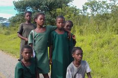 A group of African schoolgirls in green school uniform stock photography