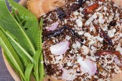 Mrówek jajek korzenna sałatka z ziele Obrazy Royalty Free