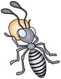 mrówka Fotografia Stock