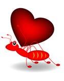 Mrówka i serce Obraz Royalty Free