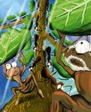 mrówki pracy Fotografia Royalty Free