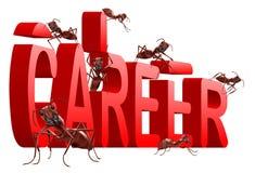 mrówki target1045_1_ kariery akcydensowy prac target1049_1_ Fotografia Royalty Free