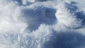 Mróz w śniegu Obrazy Royalty Free