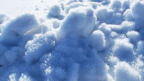 Mróz w śniegu Zdjęcia Stock