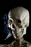 Mr. Bones has a smoke Royalty Free Stock Photos