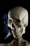 Mr. Bones has a smoke. Head shot of a human skeleton, focusing on the skull smoking a cigarette Royalty Free Stock Photos