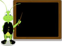 Mr. Cricket And A Blackboard Stock Image