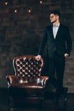 Mr. Elegance. Stock Photos