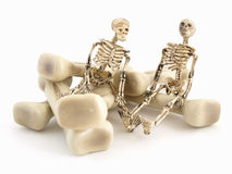 Mr and Mr Bones Royalty Free Stock Photography