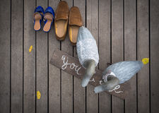 Mr and Mrs Duck with two pairs of shoes. On wooden floor Royalty Free Stock Photos