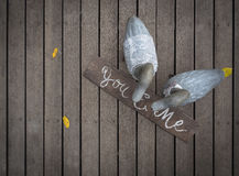Mr and Mrs Duck on wooden floor Stock Image