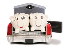 Mr and mrs piggy bank in back of american car Stock Image